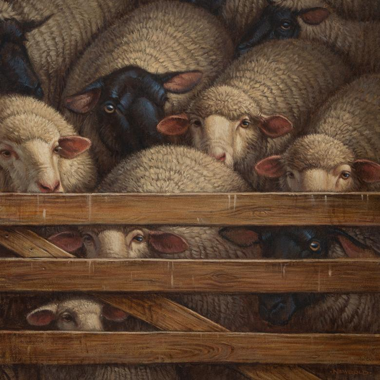 An oil painting by Gregory Leo Newbold depicting sheep waiting to be shorn as a symbol of the Atonement.