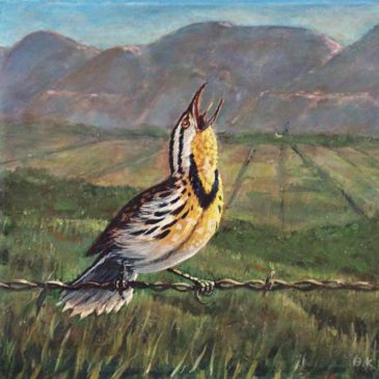 Singing Meadowlark, Brigham City, Utah